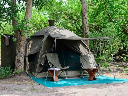 botswana_safari_05