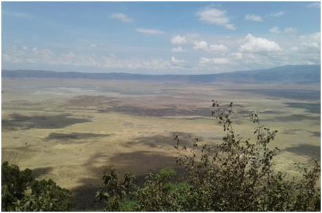 Tanzania-Ngorongoro Crater